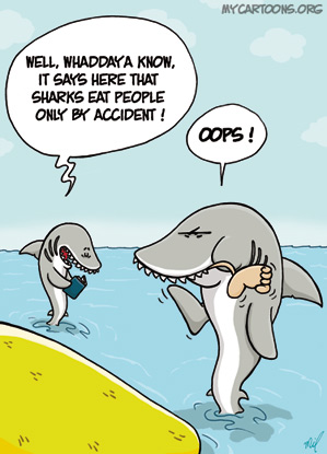 cartoon  2008 05 22 shark accident