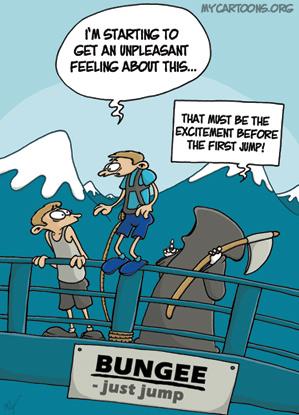 cartoon  2008 10 15 bungee death