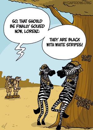 cartoon  2009 05 14 zebra issue